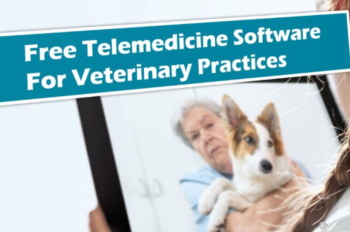 Free Veterinary Telemedicine App - UPbook