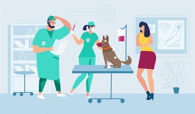Veterinary Practice - UPbook