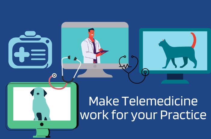 Veterinary Telemedicine Workflow - UPbook